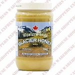Western Sage Creamed Glacial Honey