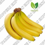 Organic Bananas. Product Of Ecuador